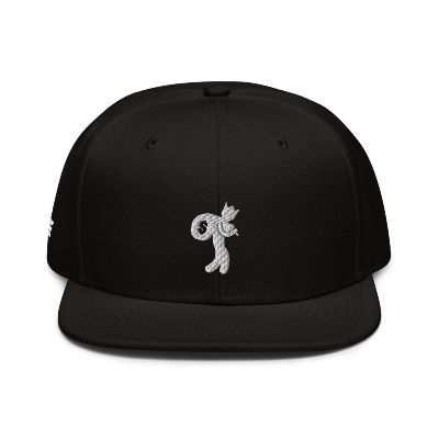 EVOLVE TRAPPAH Snapback Hat
