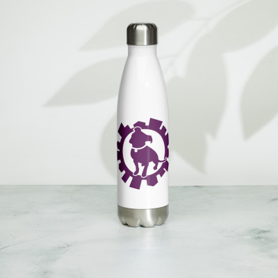Stainless Steel Water Bottle with Logo