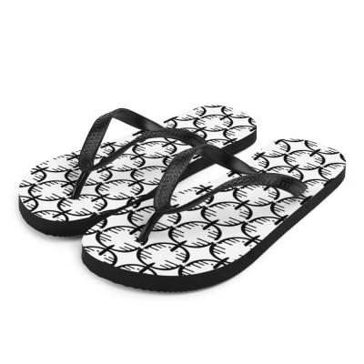 CienciaPR Flip-Flops