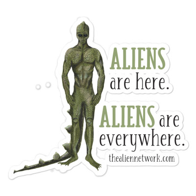 Aliens Are Here Stickers for Starseed, Star Child, Alien Lovers, UFO, ETs, Indigos, Lightworkers, Spiritual Activist, Scrapbooking, Crafts