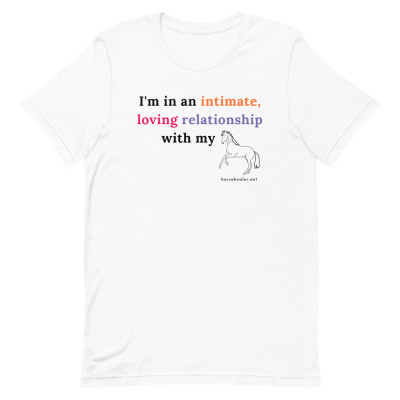I'm In An Intimate, Loving Relationship With My Horse Tshirt | Horse Short | Funny Horse TShirt | Women's Equestrian Shirt