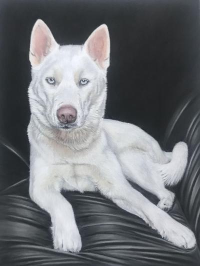 Animal Pastel Pencil Portrait Commission Art